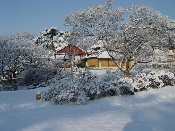 house728.jpg